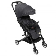 bumble and bird travel stroller