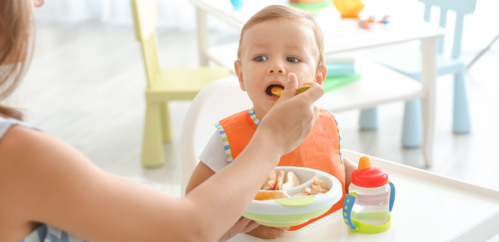 Toddler Mealtime Essentials for School and Home